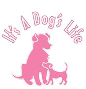 It's a Dog's Life NY